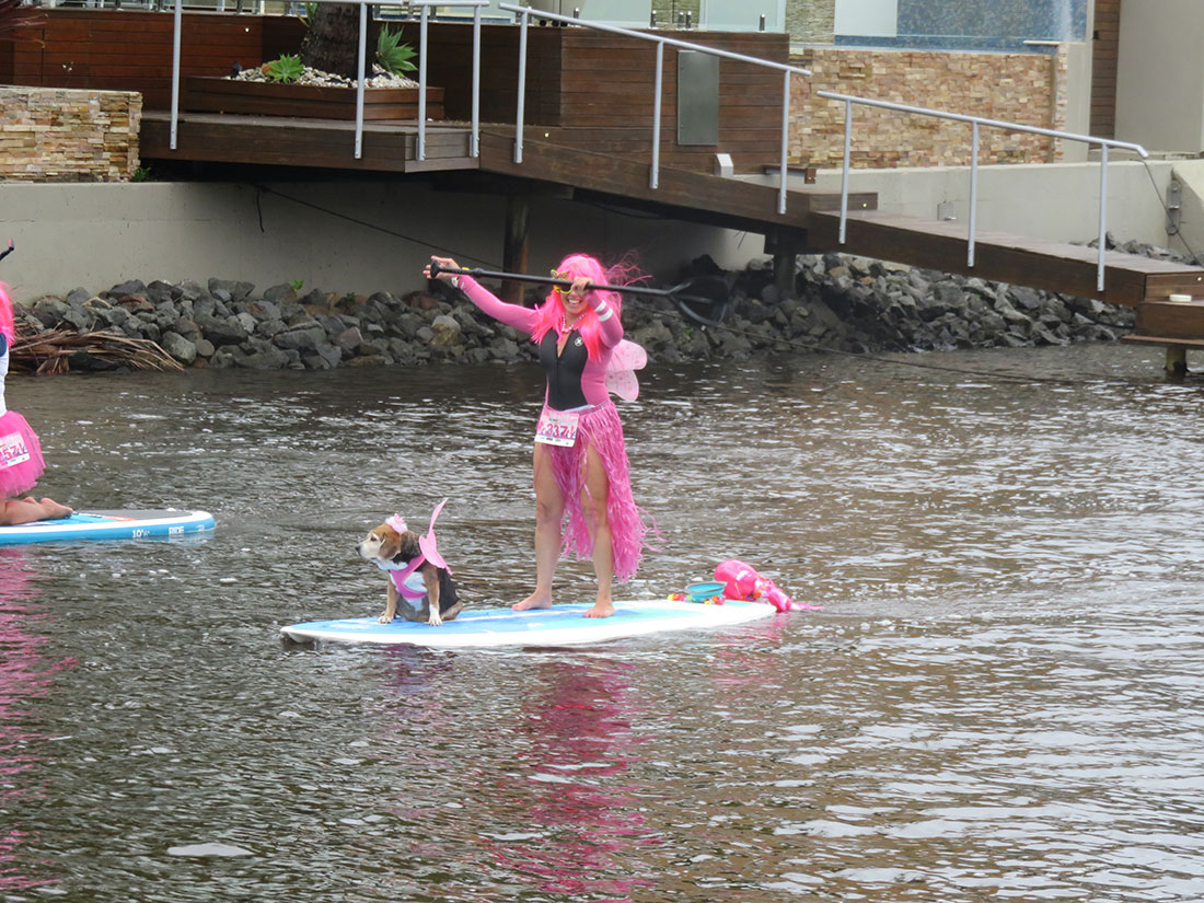 Paddle in Pink